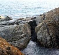 Roques granítiques al geòtop de S'Agaró